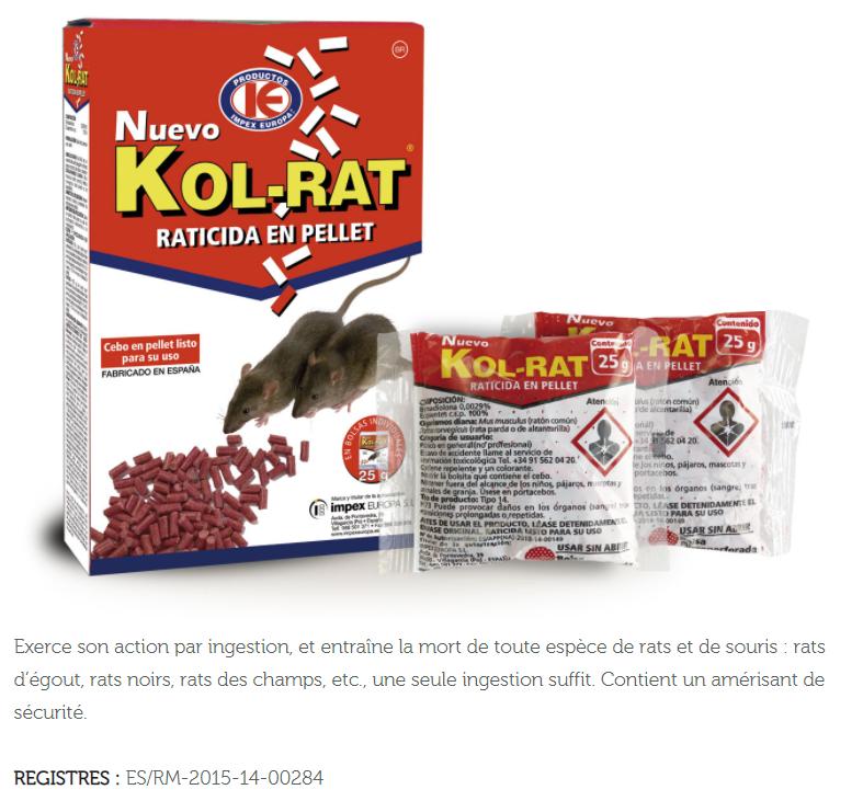 RMO DERATISATION ET DESINSECTISATION KOL RAT
